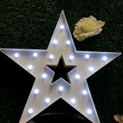 Stea decorativa luminoasa